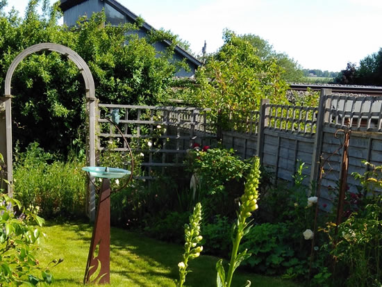 Friends of NCF - Virtual Open Gardens 2020